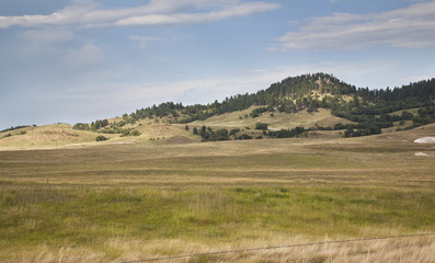 Canvas Prints Hill Hills and pine trees in the Black Hills of South Dakota