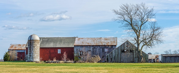 Rural Farm Panorama
