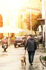 senior man leashing a bull dog walking in town