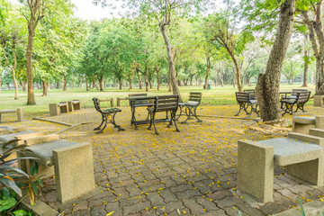 Beautiful park with table, chair and yellow flower fallen on ground under the tree.