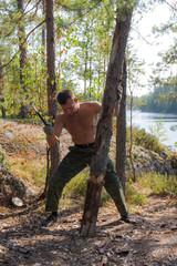 log for firewood