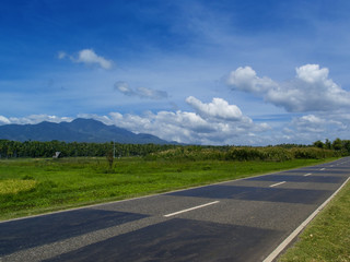 Summer landscape with road through rural land. Tropical nature bright view from highway
