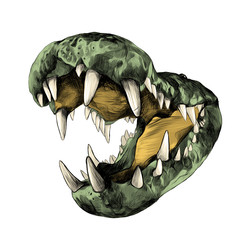 open the jaws of a crocodile with big teeth close up, sketch vector graphics color picture