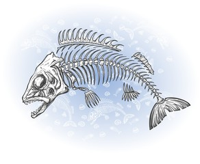 fish bone drawing