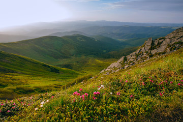 Mountain valley during sunrise / sunset. Natural summer landscape. Colorful summer landscape in the Carpathian mountains.