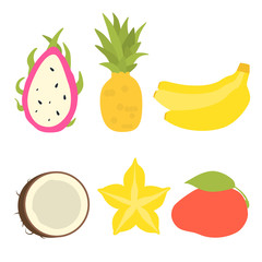Set of tropical fruits icons isolated on white background. Vector illustration