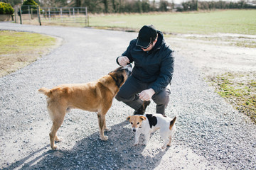 Young man pets two dogs on family farm