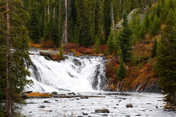 Wall Mural - Lewis Falls in Yellowstone National Park