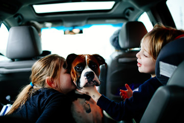 Children playing with dog in car