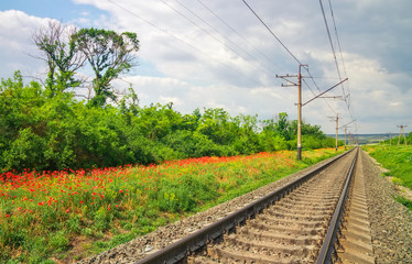 Rails of the railway among flowers and trees