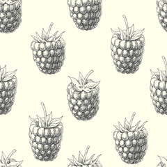 Raspberry. Vintage hand drawn illustration with summer berries. Vector seamless pattern