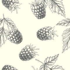 Raspberry. Vintage hand drawn illustration with berries and leaves. Vector seamless pattern