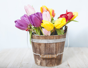 Colorful Fresh Flowers