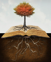 Photo sur Toile Surrealisme Knowledge Roots