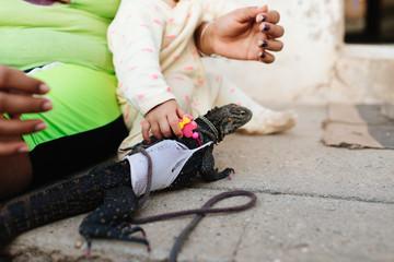 Baby girl plays with pet iguana in  Trinidad, Cuba