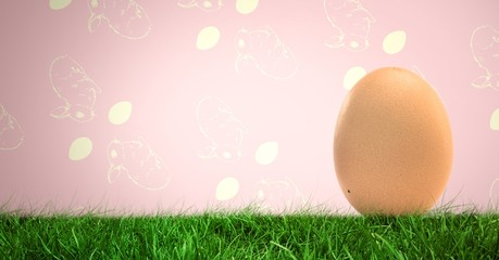 Egg in front of rabbit pattern