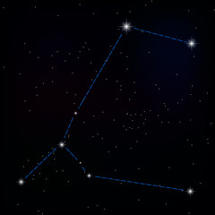 constellation of great dog . vector image of a constellation