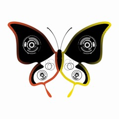 illustration of a butterfly, vector draw