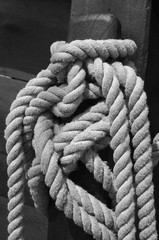 Knots in maritime rope black and white