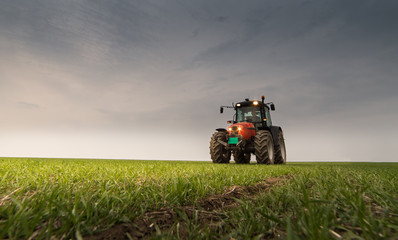Tractor spraying pesticide on wheat field with sprayer