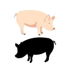 pig vector illustration Flat style black silhouette