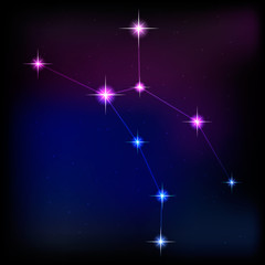 constellation of wolf . vector image of a constellation