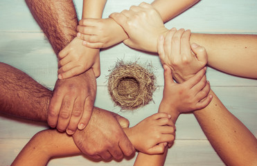 Strongly holding hands of a family around natural nest on wooden background. Family bonds, protection, security, hope, faith, solidarity.