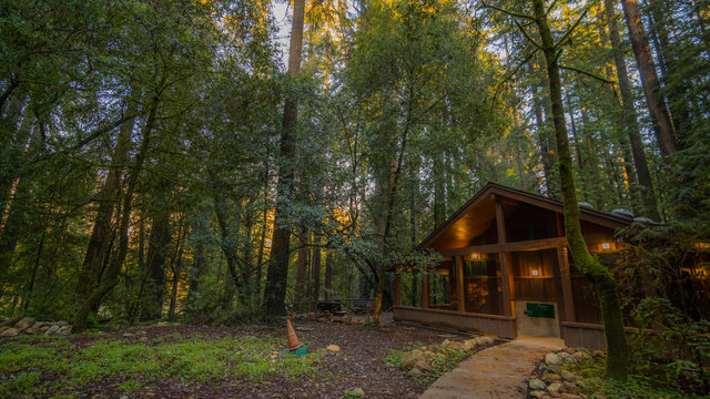 House in the fairy green forest. The sun's rays fall through the branches. Redwood national and state parks. California, USA