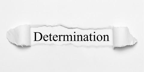 Determination on white torn paper
