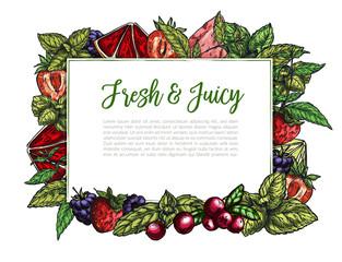 Colorful realistic frame composed of berries