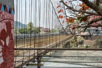 Eternity Suspension Bridges in Alishan Scenic Area