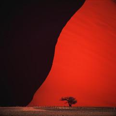 Tuinposter Rood desert
