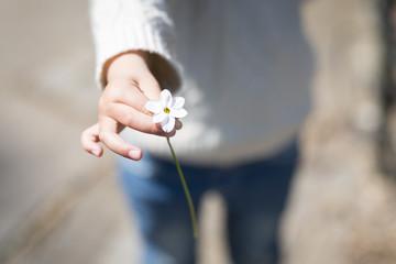 白い花を手渡す子供