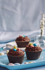 chocolate cupcakes decorated with skittles