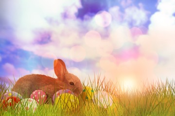 Composite image of close-up of easter bunny
