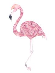 Watercolor exotic flamingo. Summer decoration print. Vector illustration