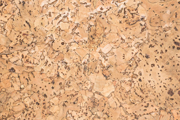 Tuinposter Texturen texture of cork board wood surface, natural wooden decorative panel, brown abstract background
