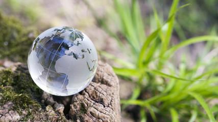 Klimawandel, Naturschutz