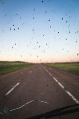 Bugs on a windshield with highway background