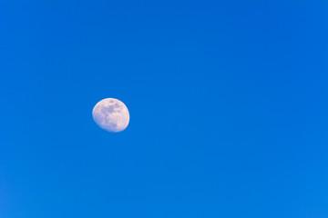 Mond kurz vor Vollmond