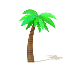 Palm trees in cartoon style isolated on white background