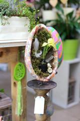Doniczka z połówki jajka Wielkanocnego z mchem, kwiatem i pierzem.