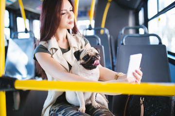 Beautiful young woman sitting in city bus with her pug dog and taking selfie photo with the phone. Selective focus on dog.