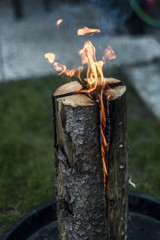 Swedish torch fire burning stub on plate for rest or to cook food chill mood