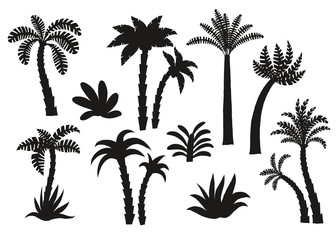 Palm tree black silhouettes set.