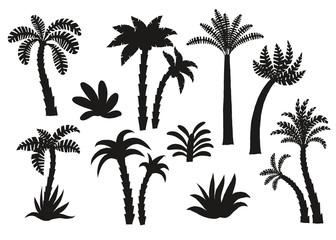Palm tree black silhouettes set.