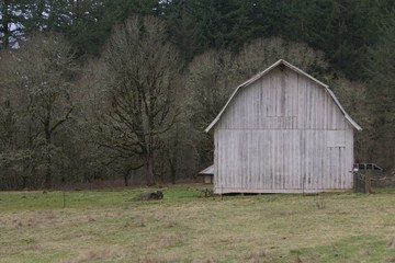 Old Grey Wooden Barn in the Country - Compostion off center frame, distance viewpoint, Use Barn Area for Copy Overlay with or without text box (HDR Image)