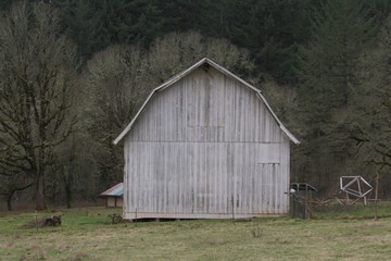 Old Grey Wooden Barn in the Country - Composition center frame, mid-ground viewpoint - Use Barn Area for Copy Overlay with or without text box (HDR Image)