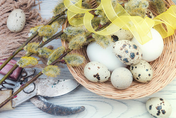 Willow branches and eggs on the table