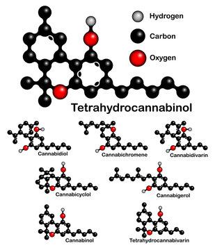 Chemical formulas of natural cannabinoids. Structural formulas of tetrahydrocannabinol, cannabinol, cannabidiol, cannabichromene, cannabidivarin, cannabicyclol, cannabigerol, tetrahydrocannabivarin.